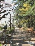 T.K 名古屋地方検察庁検事 2009年度修了生(既修者)